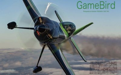 Game Composites Article, Japan 2021